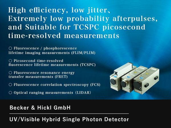 High Speed Hybrid Detector for TCSPC